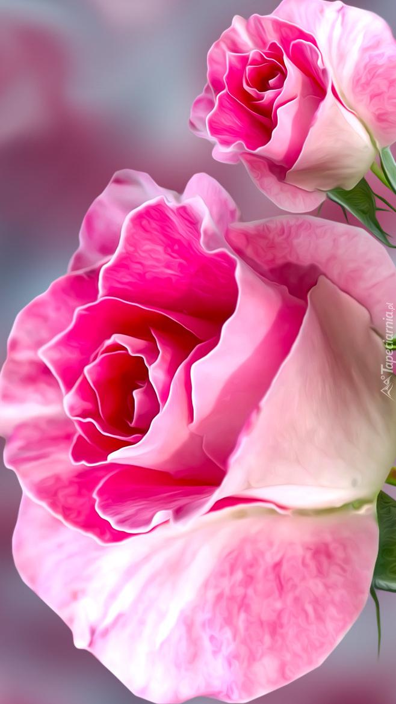 Dwie róże w grafice