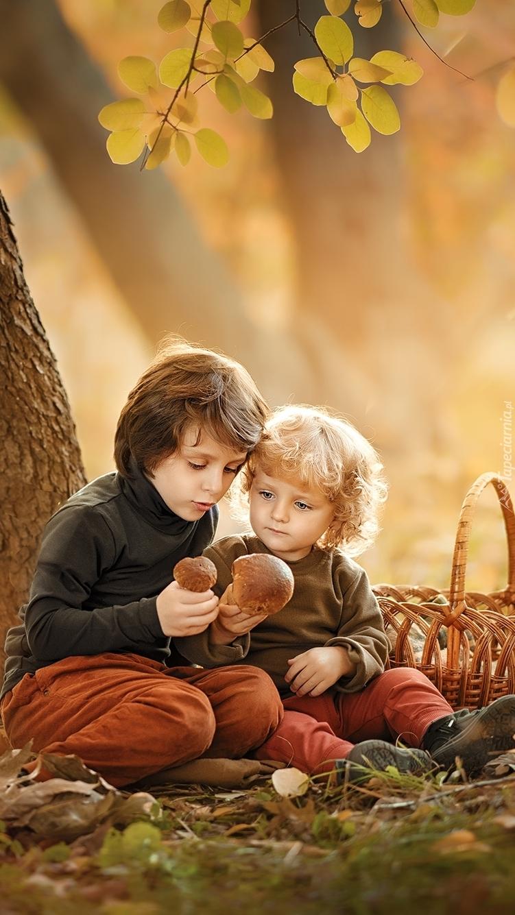 Dzieci w lesie na grzybobraniu