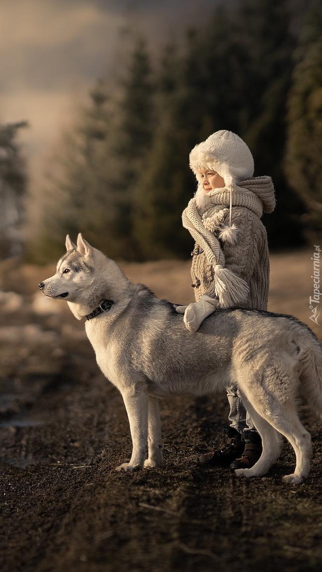 Dziecko i siberian husky