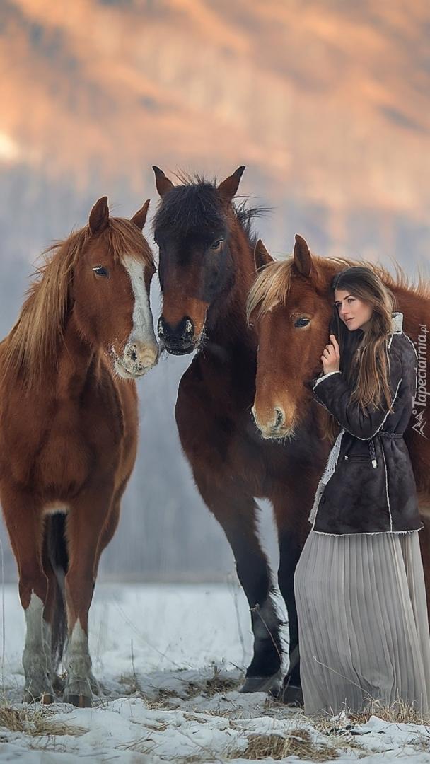 Dziewczyna i konie