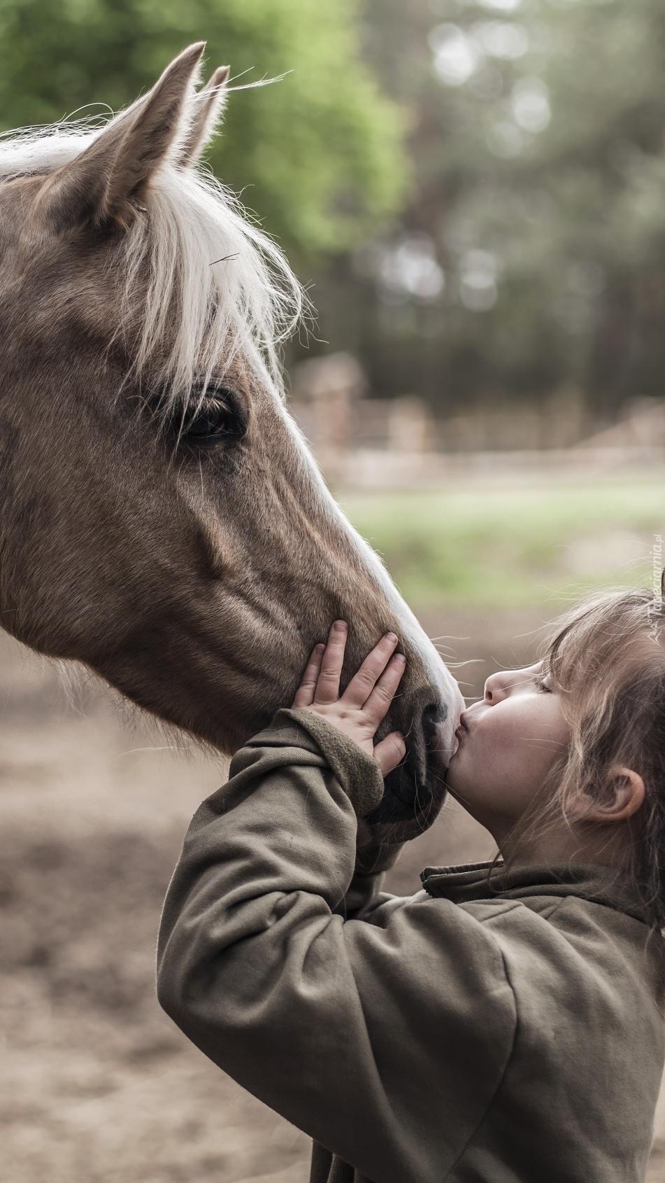 Dziewczynka i buziak dla konia