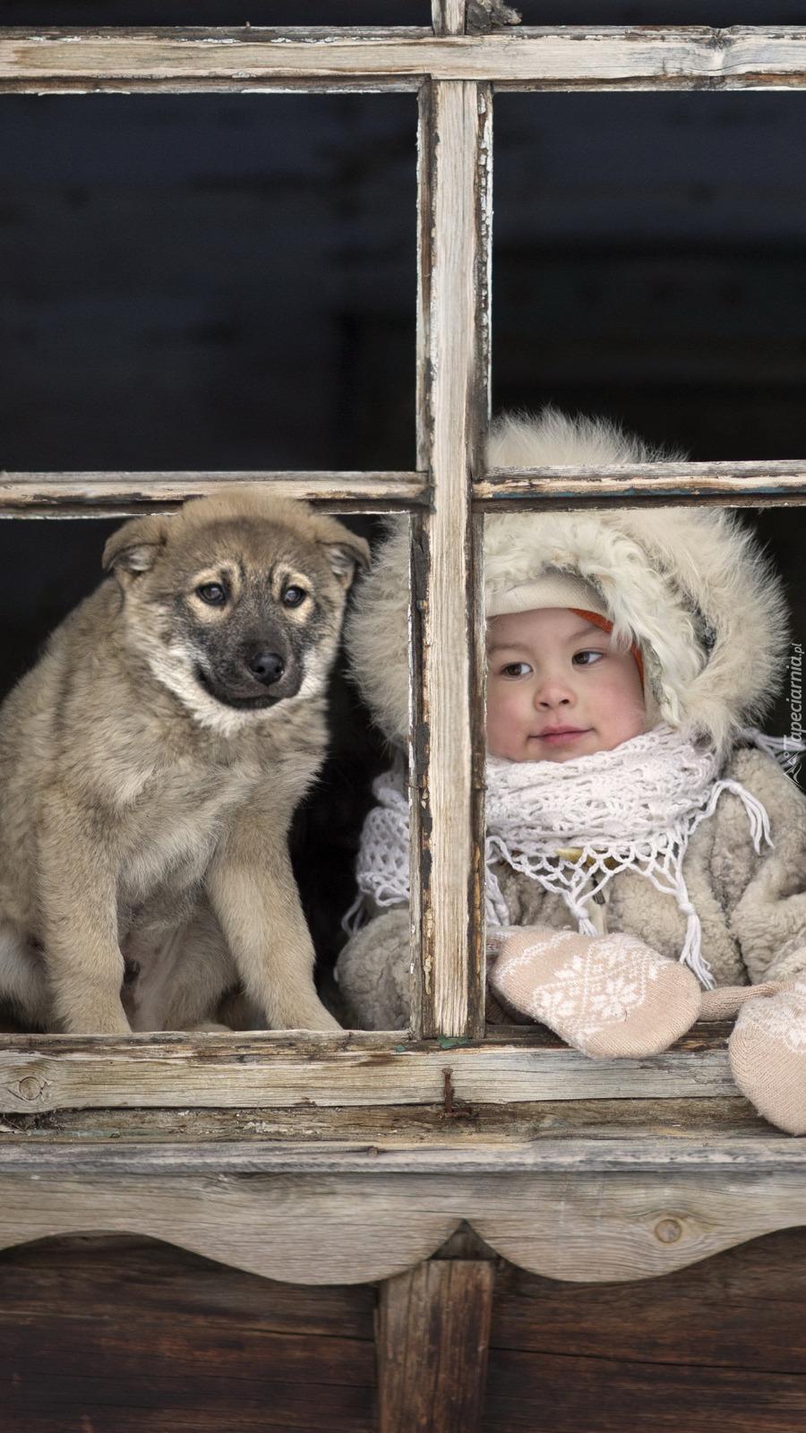 Dziewczynka i pies przy oknie