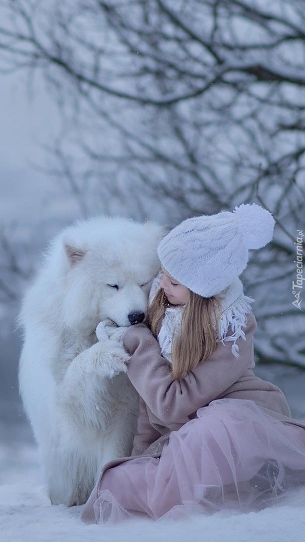 Dziewczynka i samojed  w śniegu