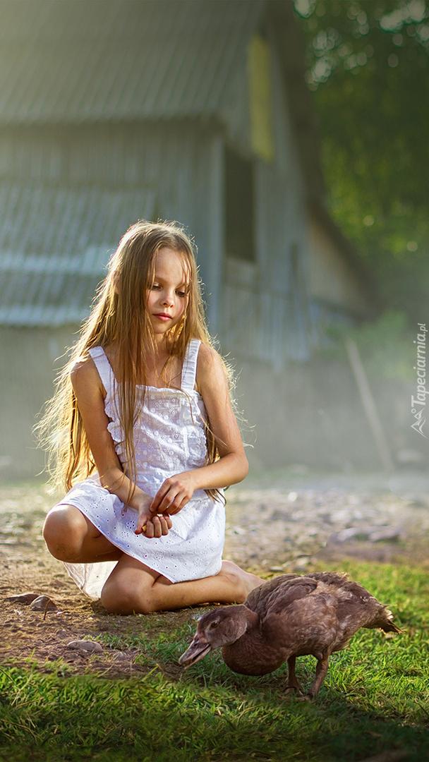 Dziewczynka karmiąca kaczkę
