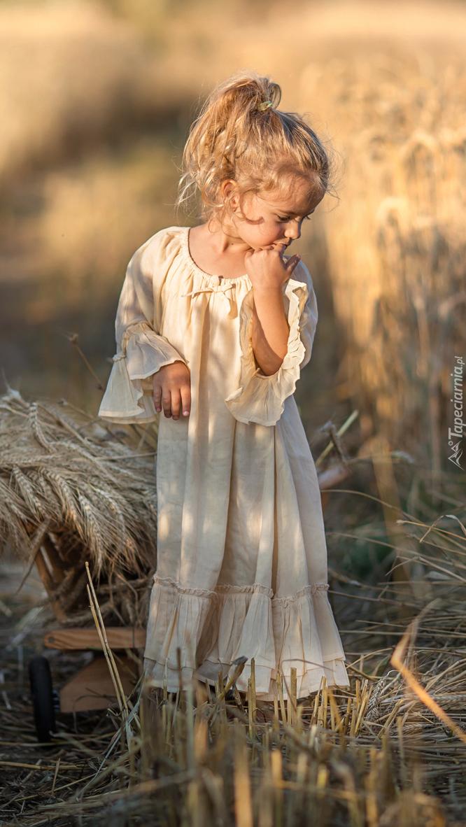 Dziewczynka na polu zboża