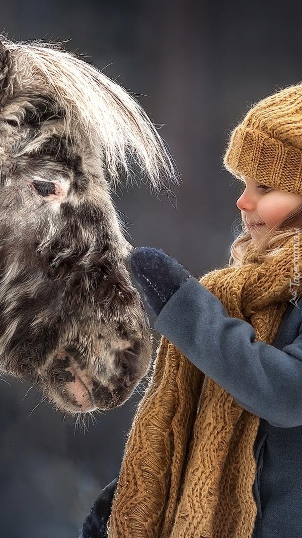 Dziewczynka przy kucu szetlandzkim