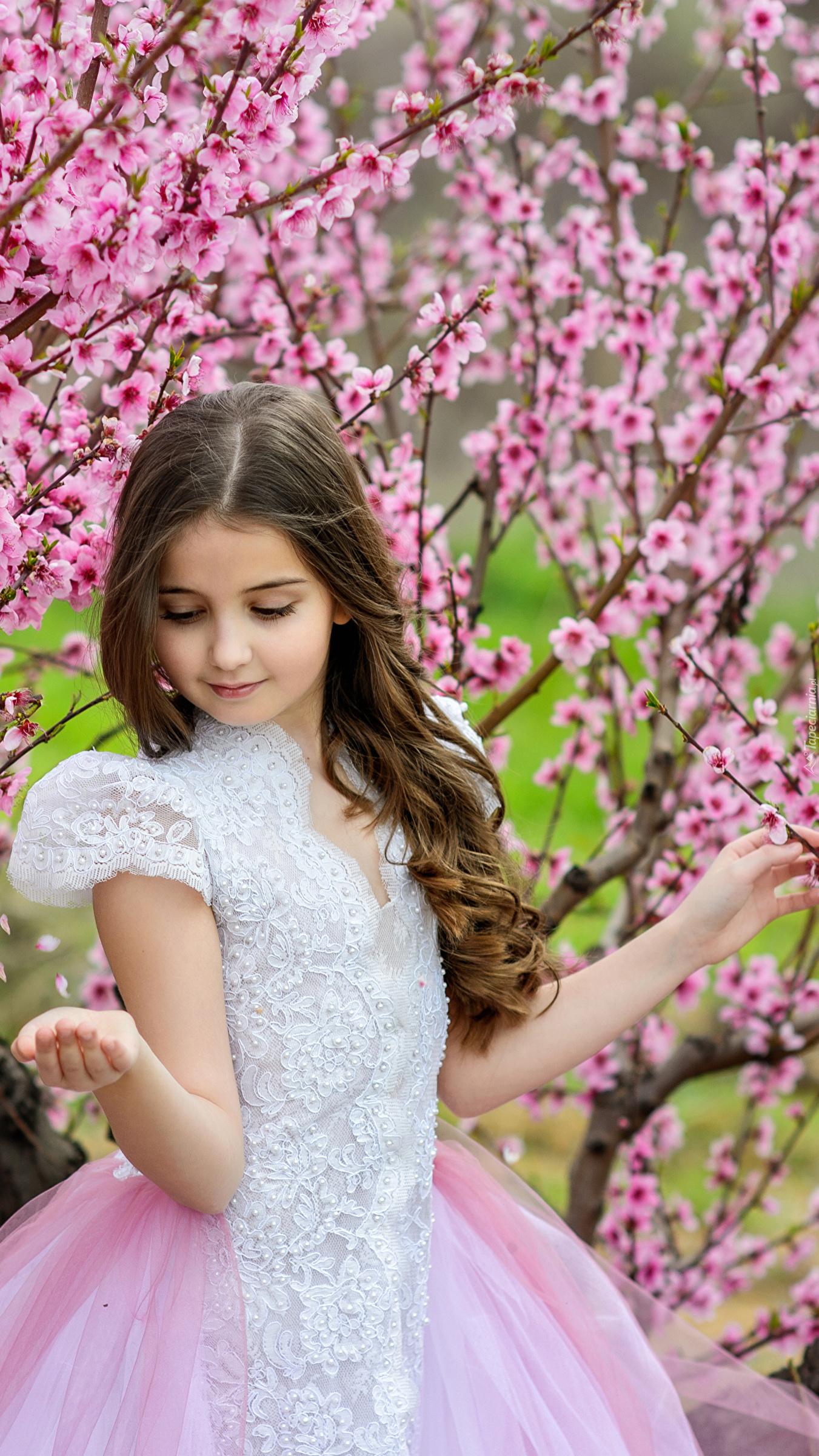 Dziewczynka przy kwitnącym drzewie
