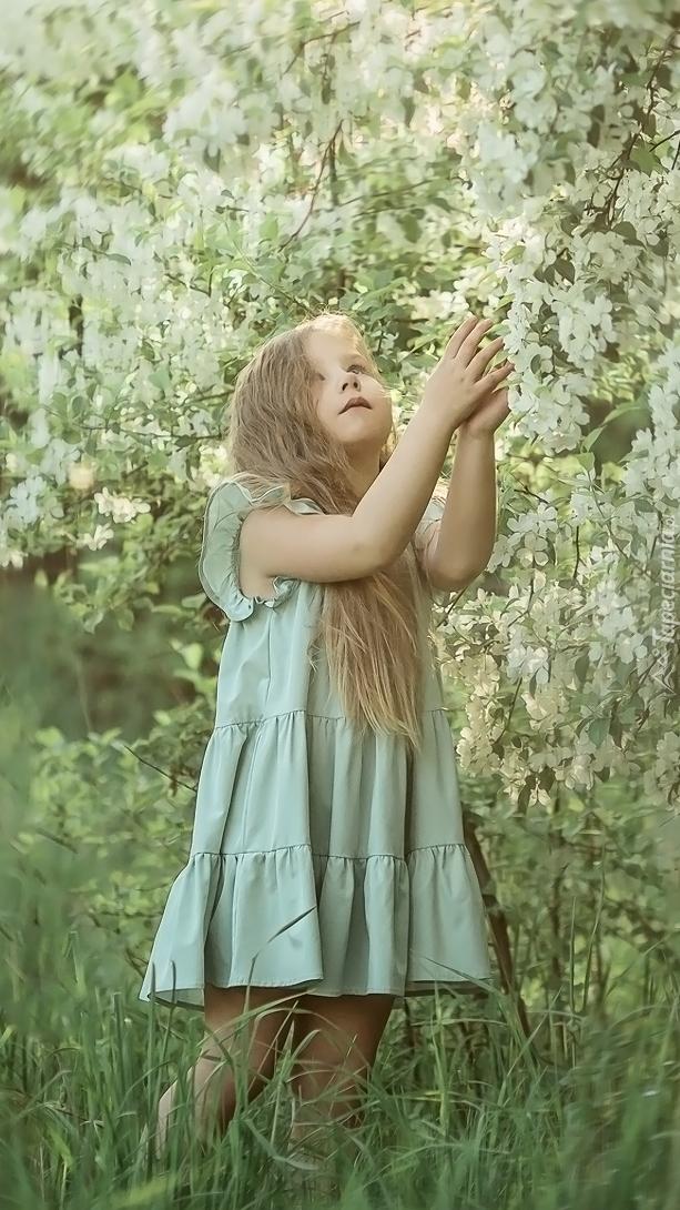 Dziewczynka przy kwitnącym krzewie