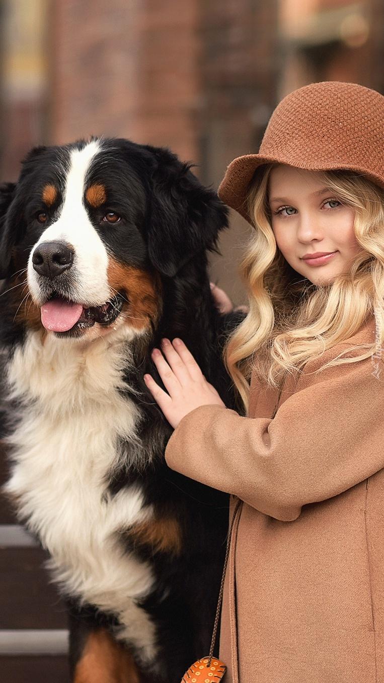Dziewczynka z berneńskim psem pasterskim
