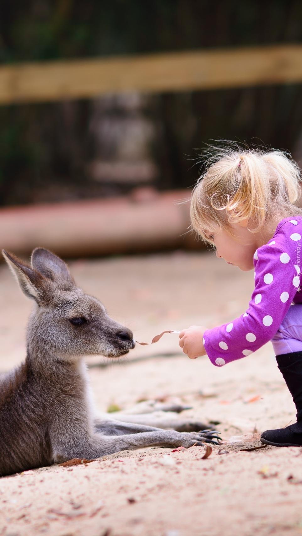 Dziewczynka z kangurem