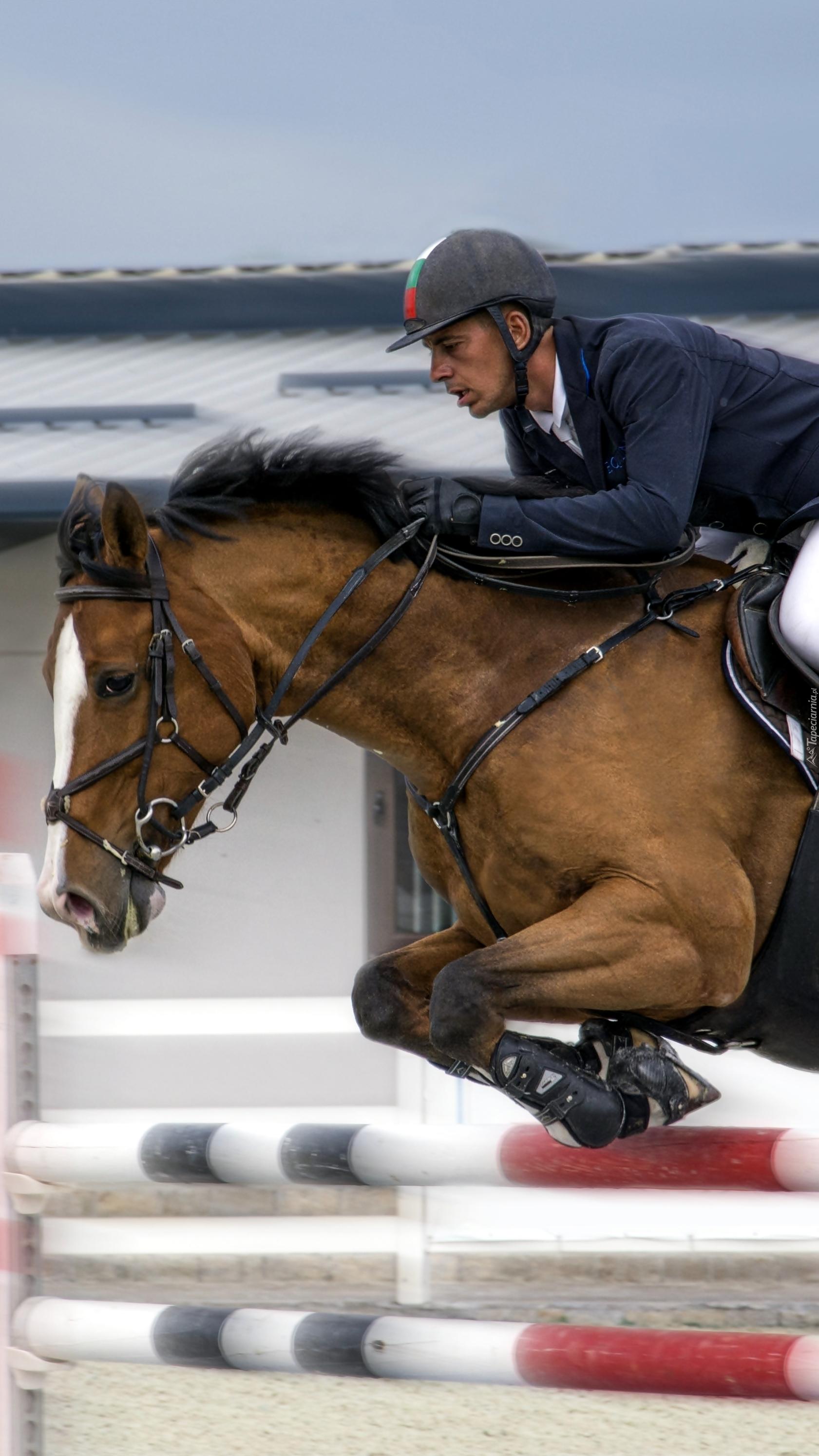 Dżokej na koniu podczas wyścigu
