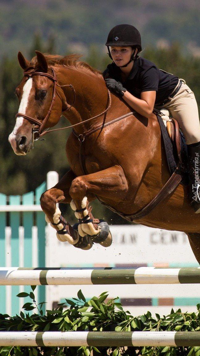 Dżokejka na koniu