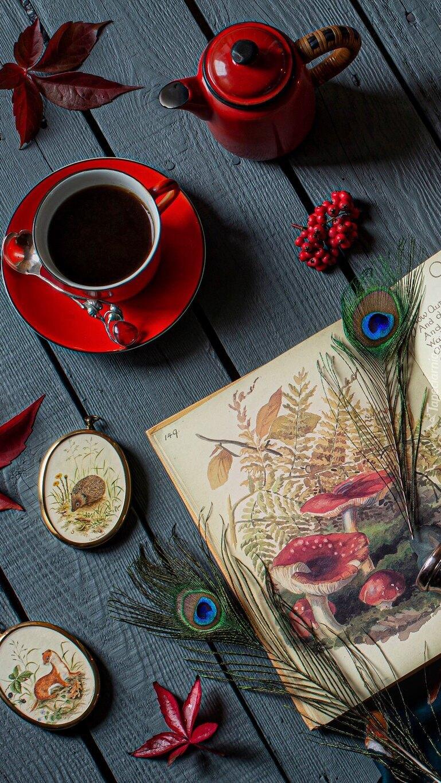 Filiżanka kawy obok dzbanuszka i otwartej książki