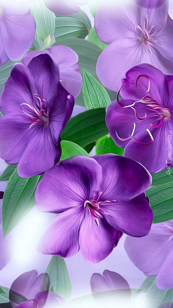 Fioletowe kwiaty w grafice