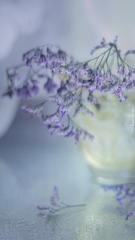 Fioletowe rośliny w wazoniku