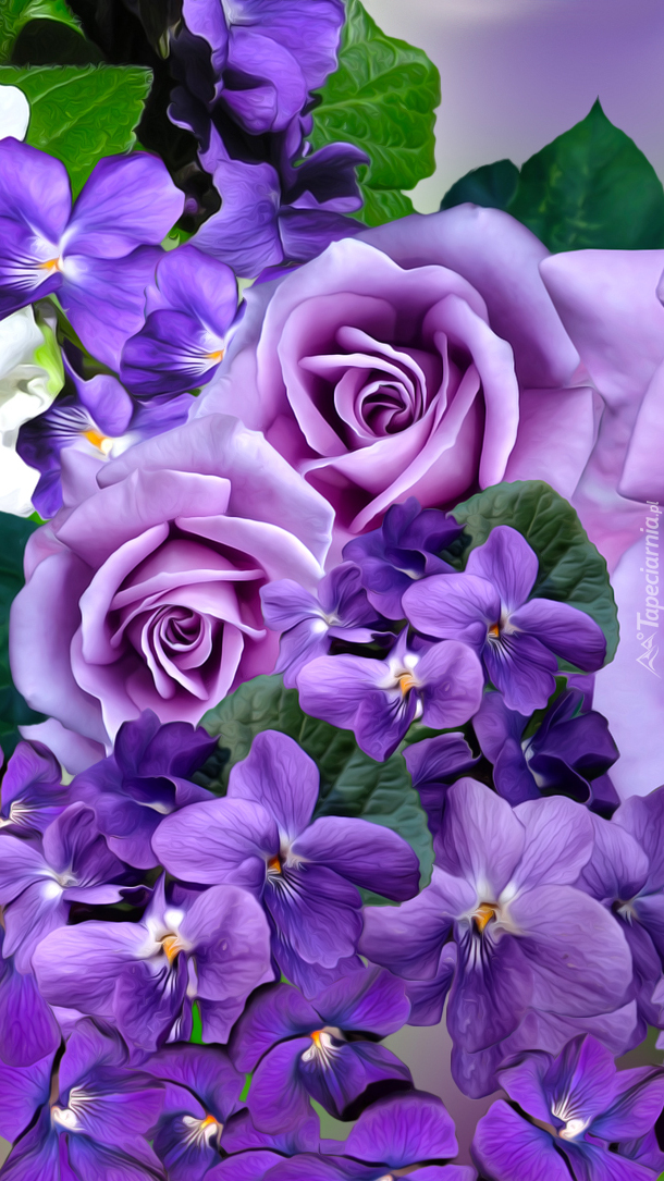 Fioletowe róże i fiołki