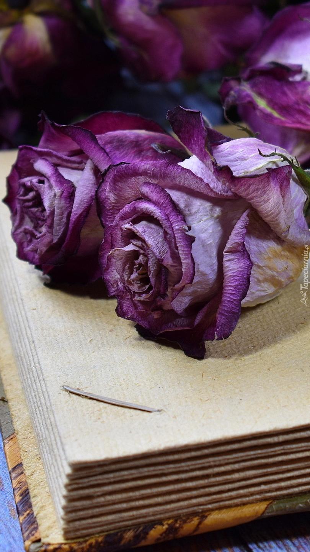Fioletowe róże na książce