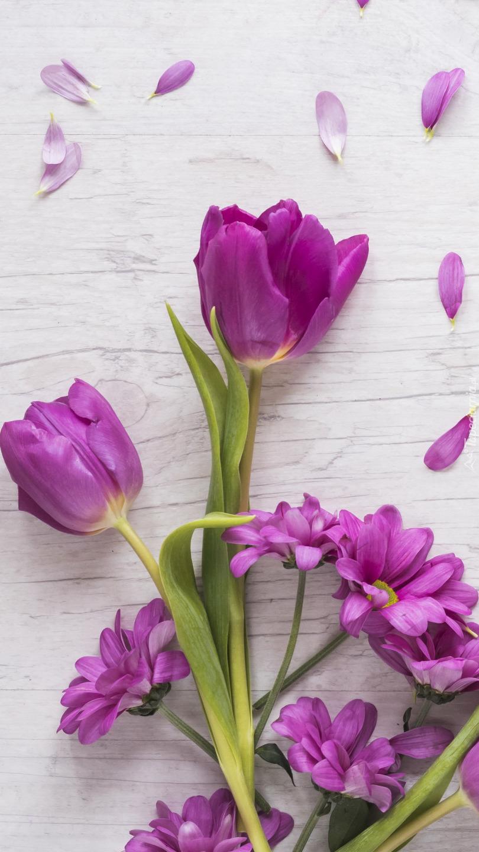 Fioletowe tulipany i chryzantemy