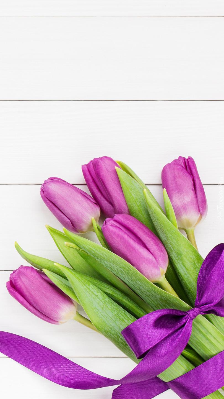 Fioletowe tulipany przewiązane wstążką