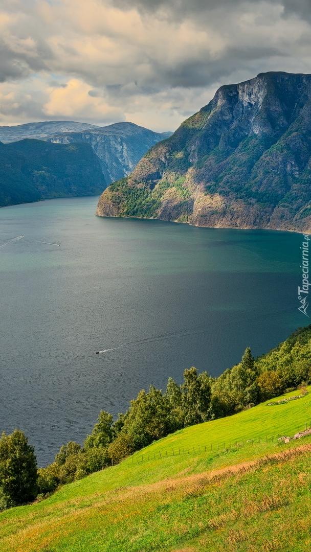 Fiord Aurlandsfjord w Norwegii