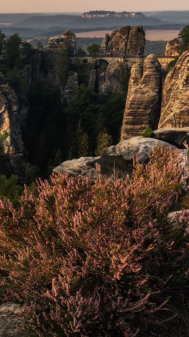 Formacja skalna Bastei
