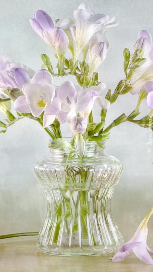 Frezje w szklanym wazoniku