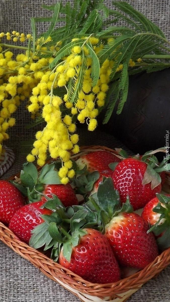Gałązki akacji w wazonie nad truskawkami w koszyku