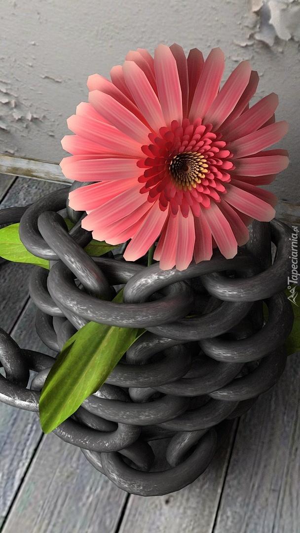 Gerbera i łańcuch