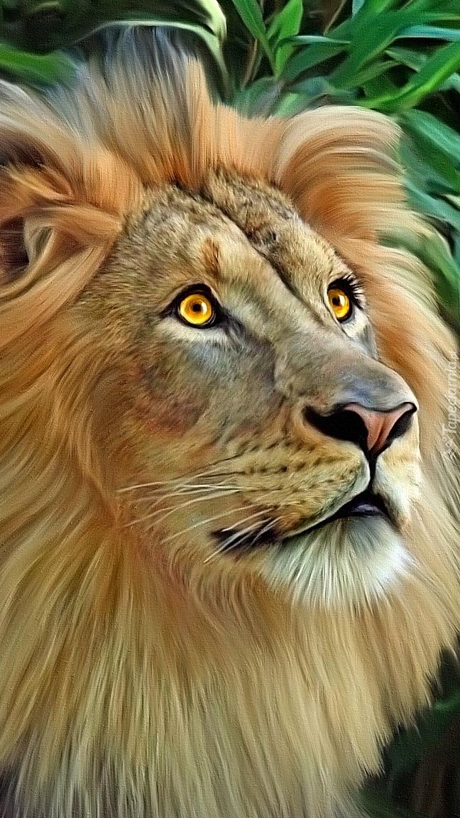 Głowa lwa w grafice