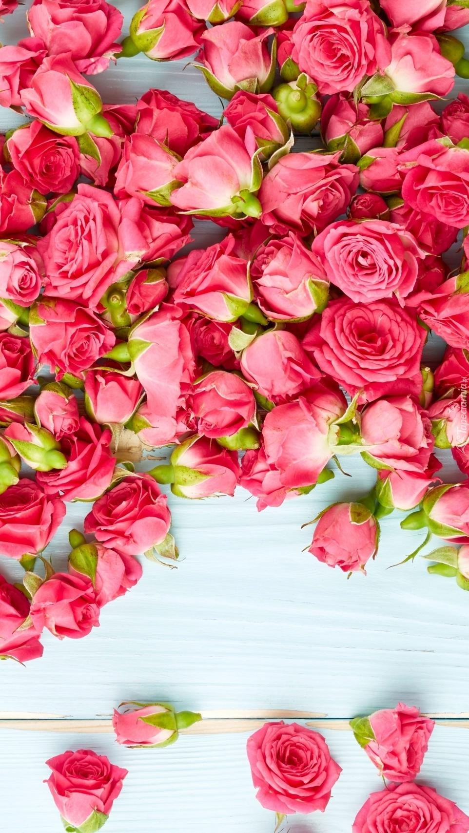 Główki róż rozsypane na deskach