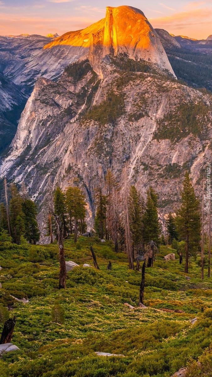 Góra Half Dome w Kalifornii