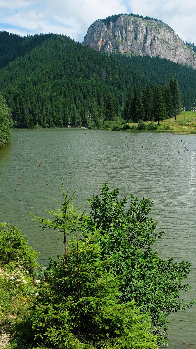 Góra i lasy nad jeziorem