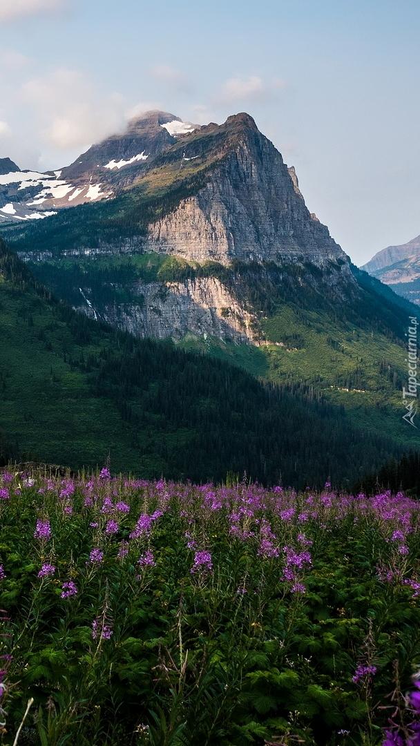 Góra Oberlin w Montanie