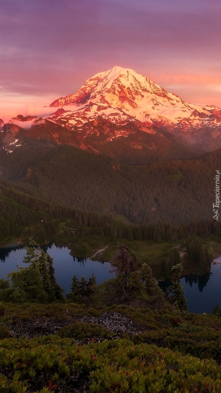 Góra Tolmie Peak