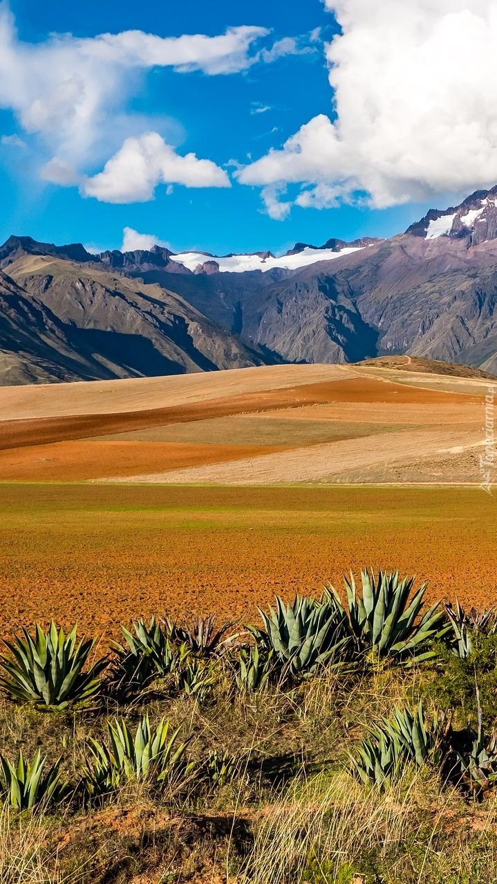 Góra w regionie Cuzco w Boliwii