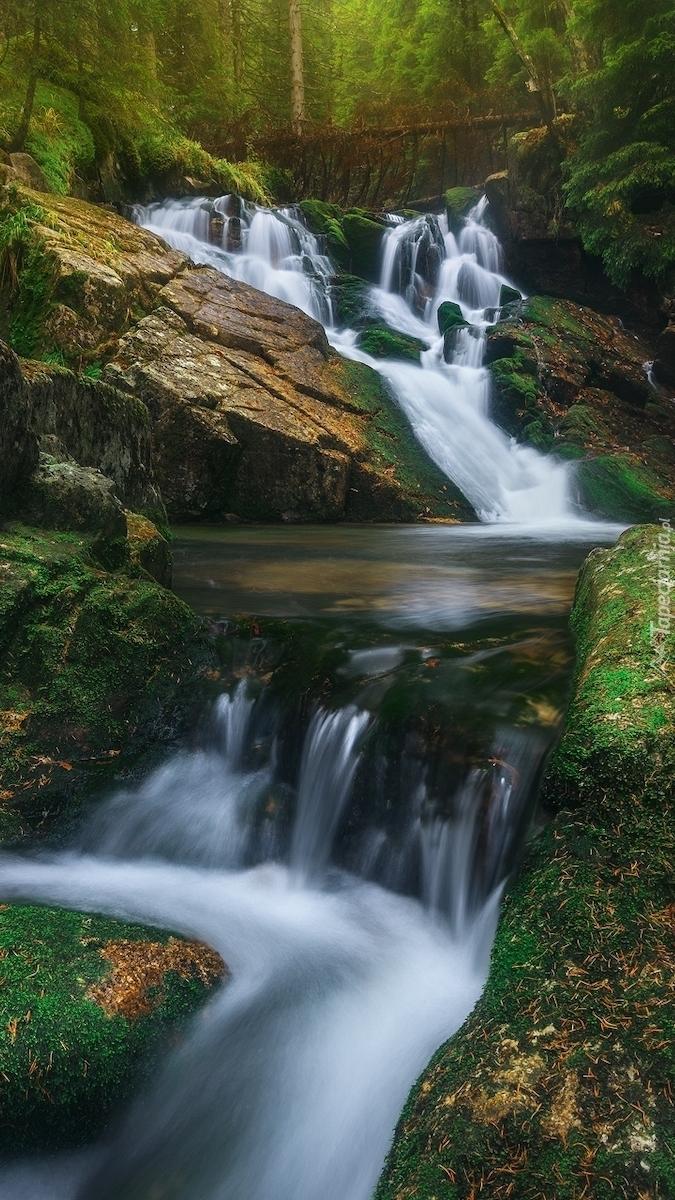 Górski potok pośród omszałych kamieni