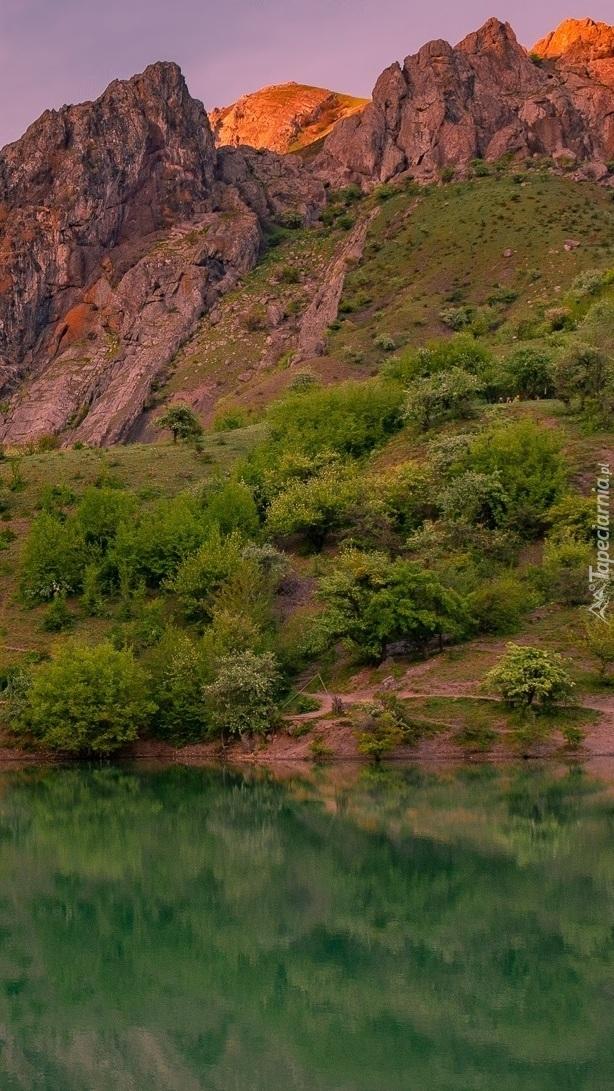Górskie jezioro otoczone krzewami