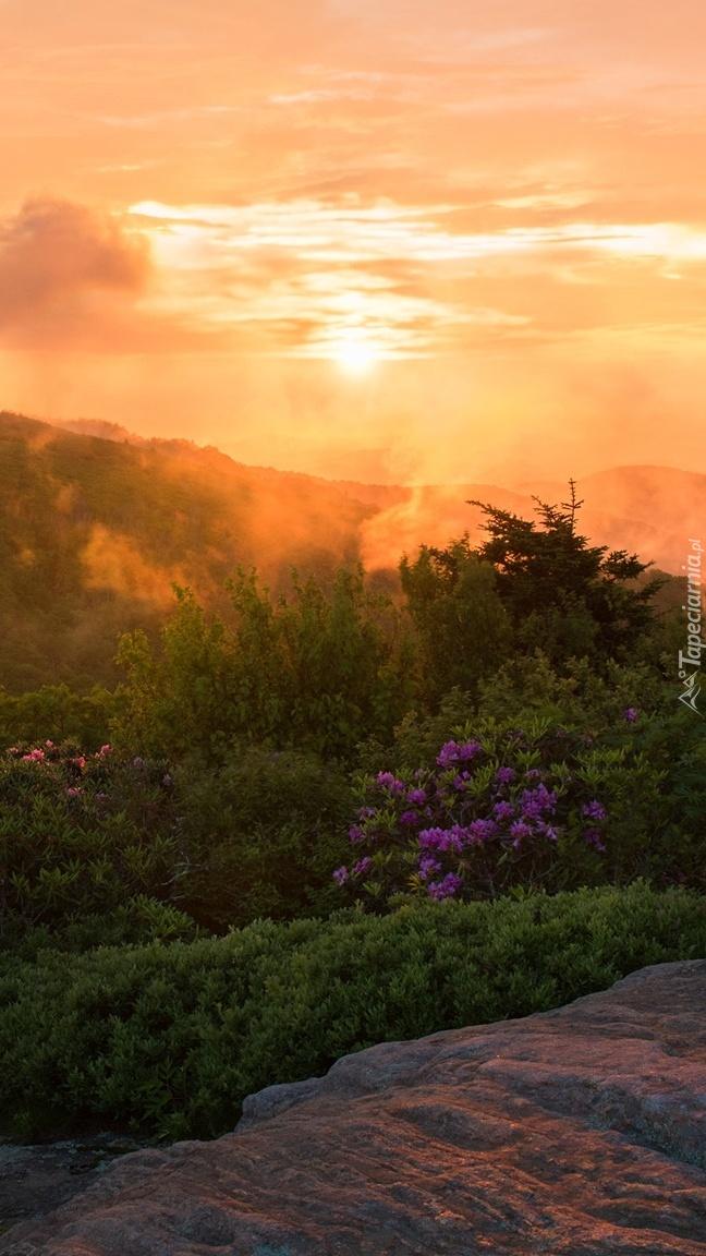 Góry Appalachy w stanie Tennessee