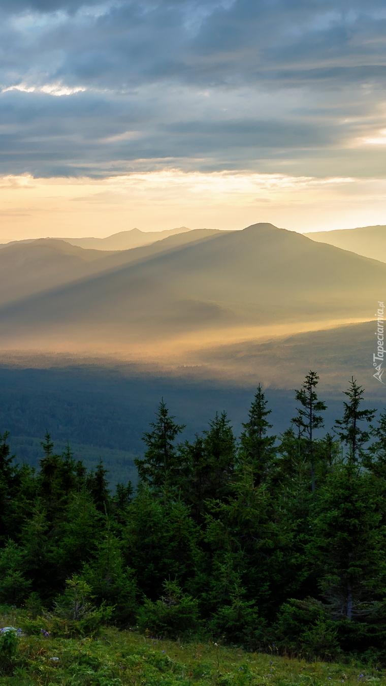 Góry i drzewa o wschodzie słońca