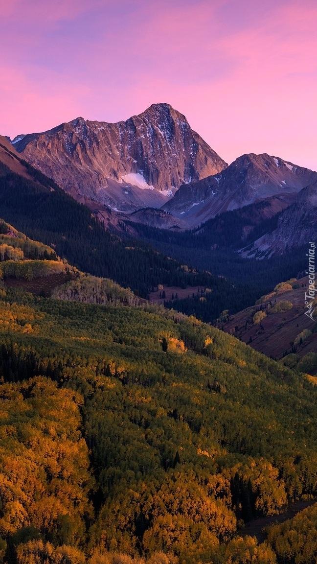 Góry i lasy pod różowym niebem