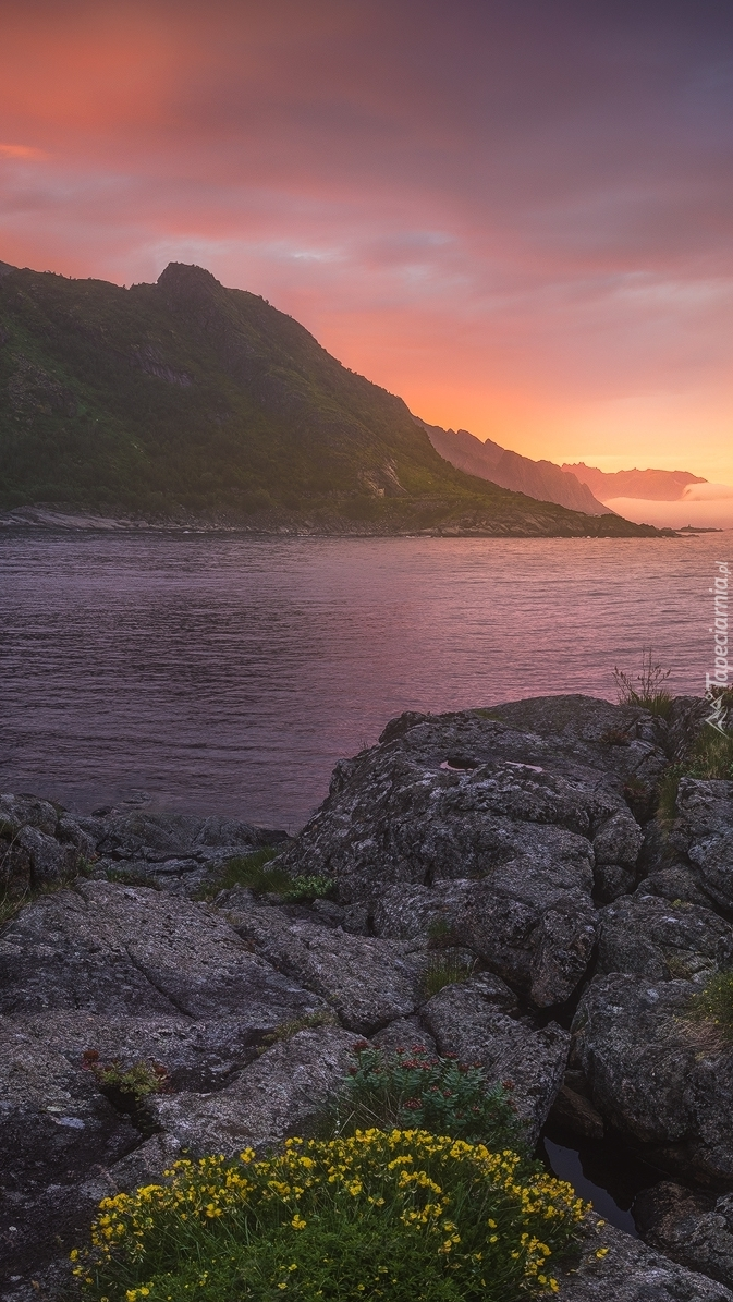 Góry nad morzem Norweskim
