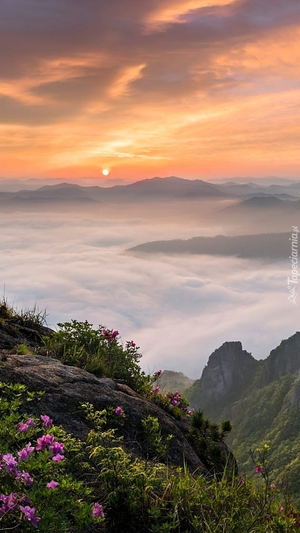 Góry Wolchulson we mgle o wschodzie słońca