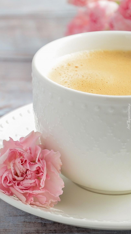 Goździk przy filiżance kawy