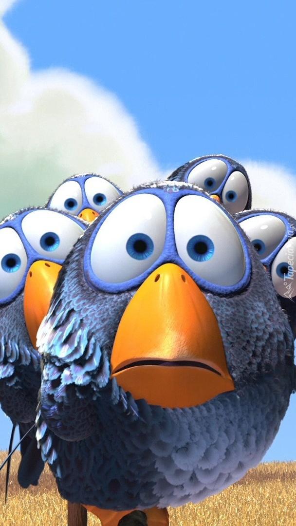 Graficzne ptaszki