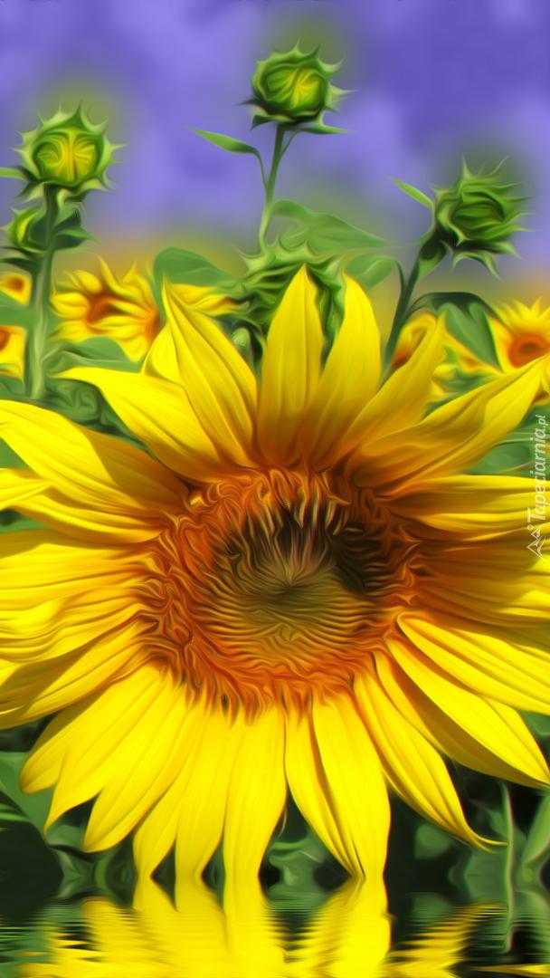 Graficzny słonecznik