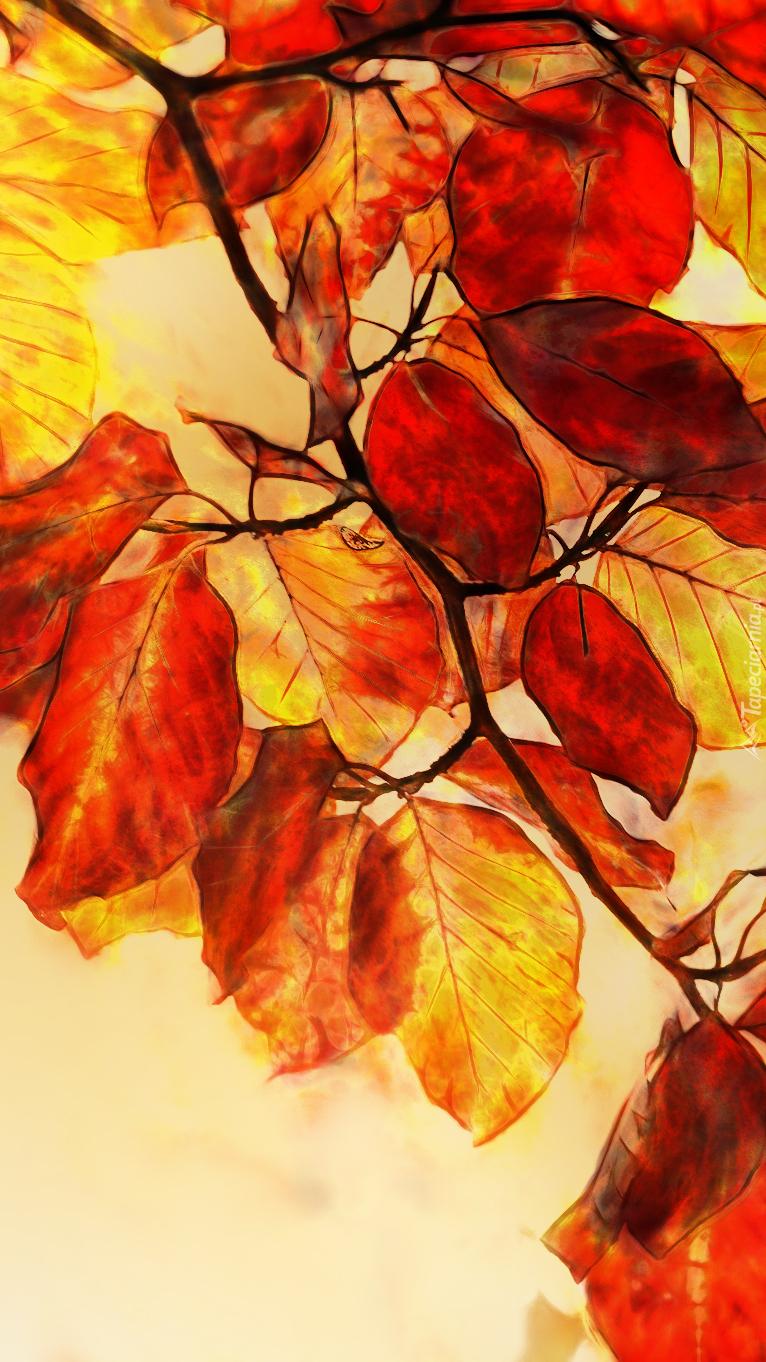 Grafika żółto-czerwonych liści buka