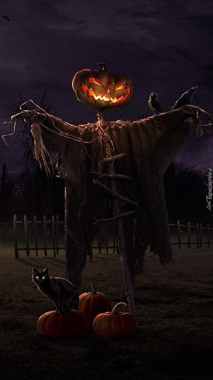 Halloween czas zacząć