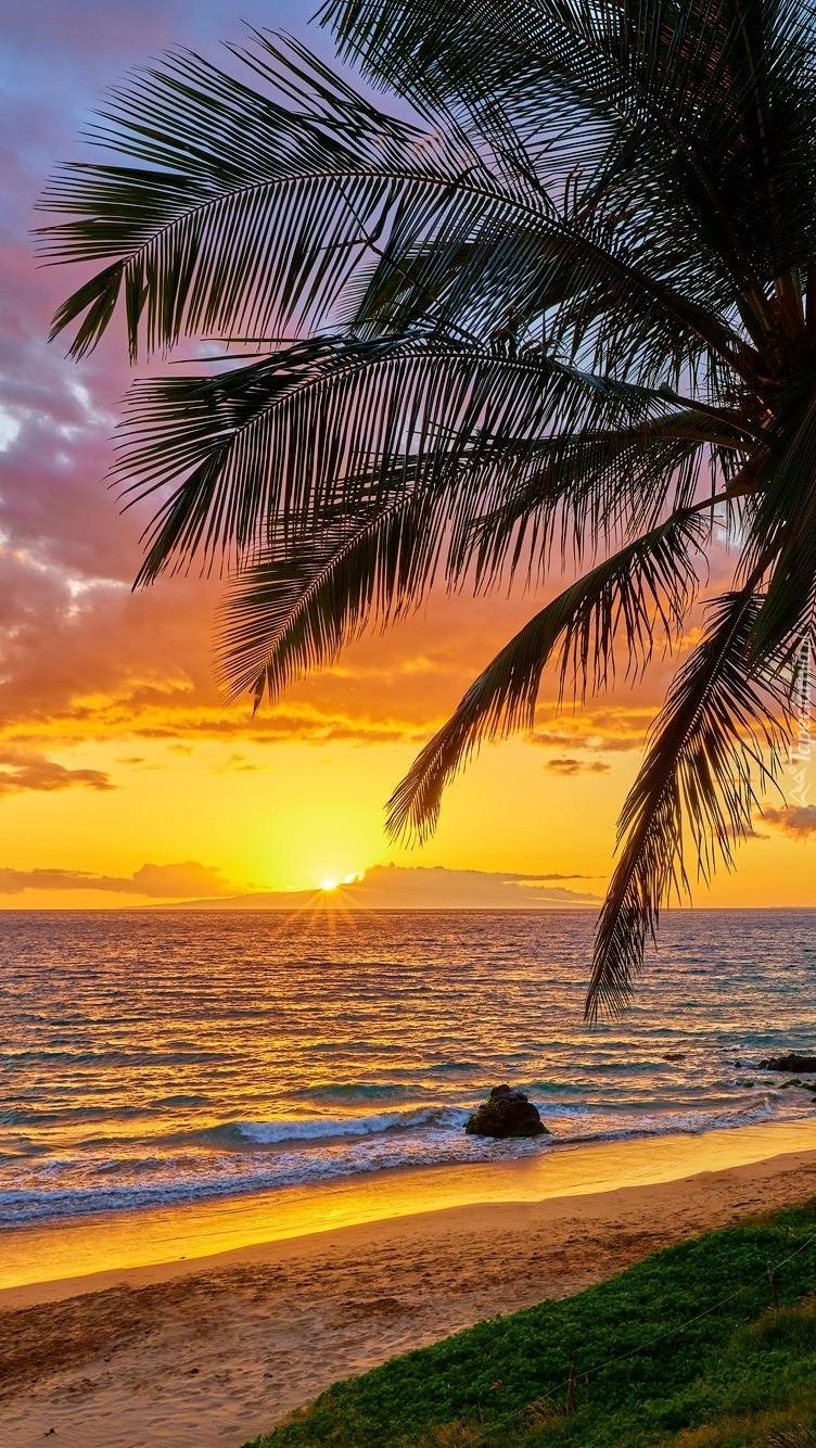 Hawaje o wschodzie słońca