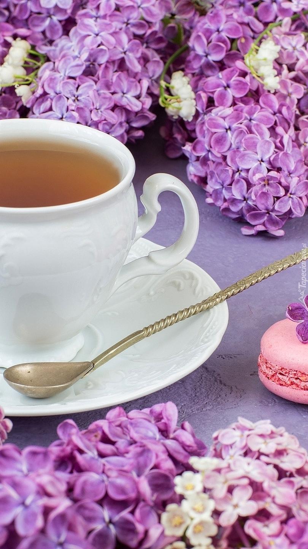 Herbata w filiżance pośród bzu