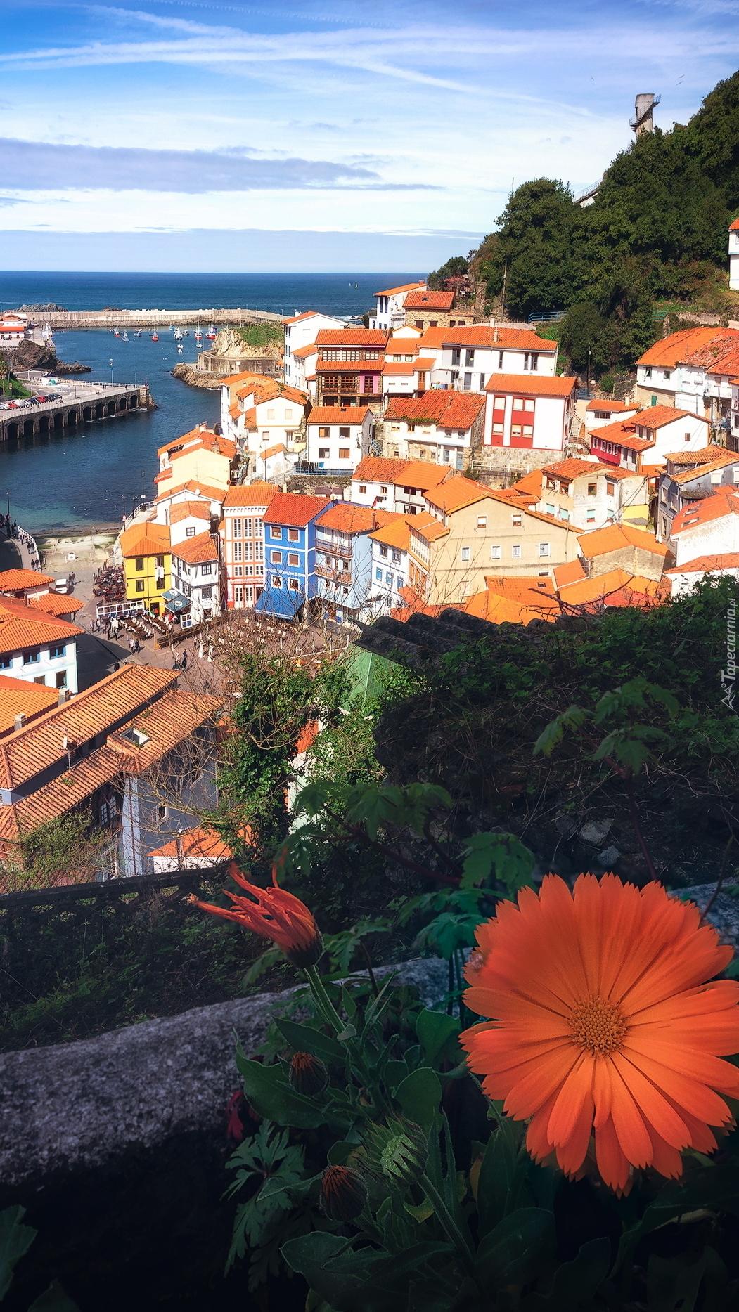 Hiszpańskie miasteczko Cudillero